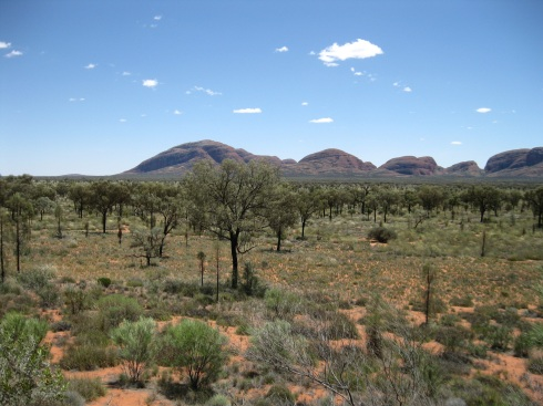 The domes of Kata Tjuta from afar.