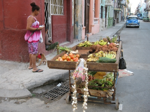 Just walking her dog and shopping at the fruit cart on a street in Old Havana.